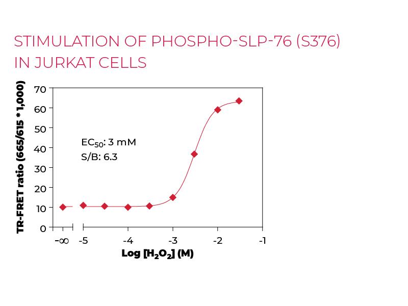 Stimulation of Phospho-SLP-76 (S376) in Jurkat cells