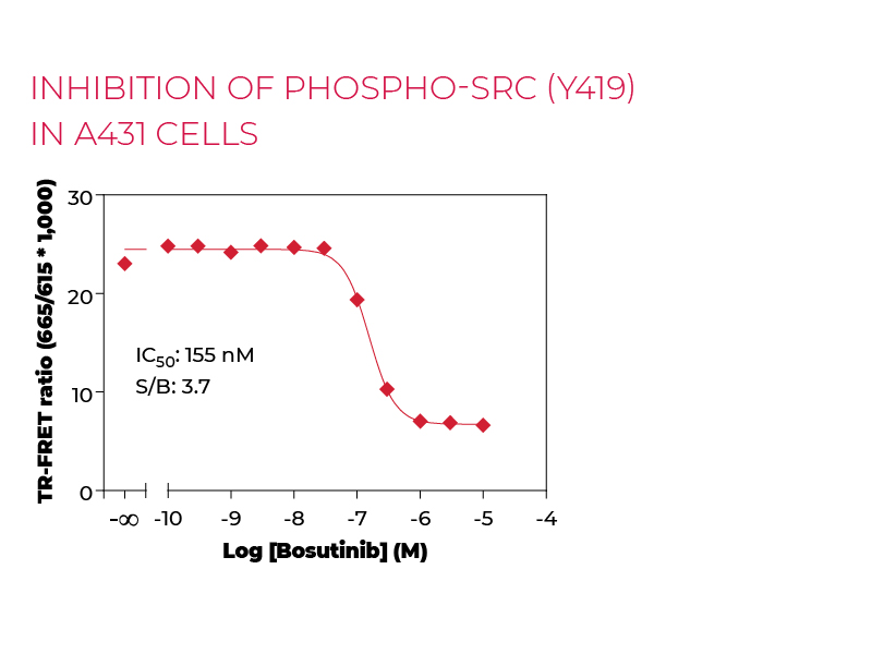 Inhibition of Phospho-SRC (Y419) in A431 cells