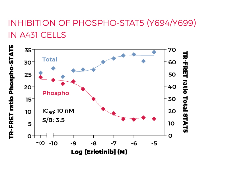 Inhibition of Phospho-STAT5 (Y694/Y699) in A431 cells