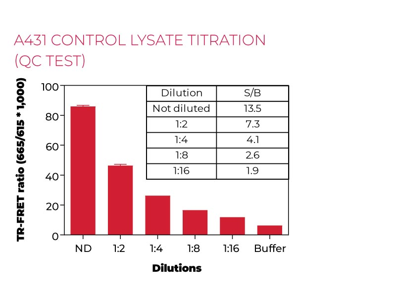 A431 control lysate titration (QC test)