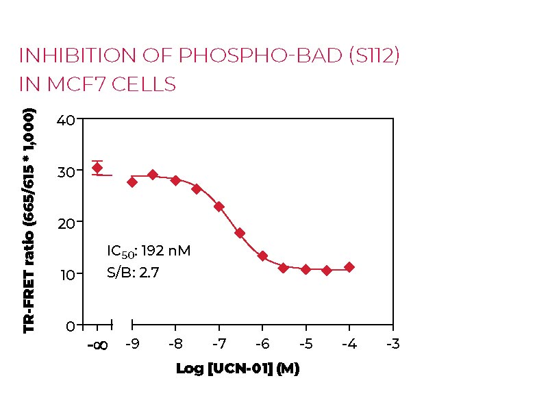 Inhibition of Phospho-BAD (S112) in MCF7 cells