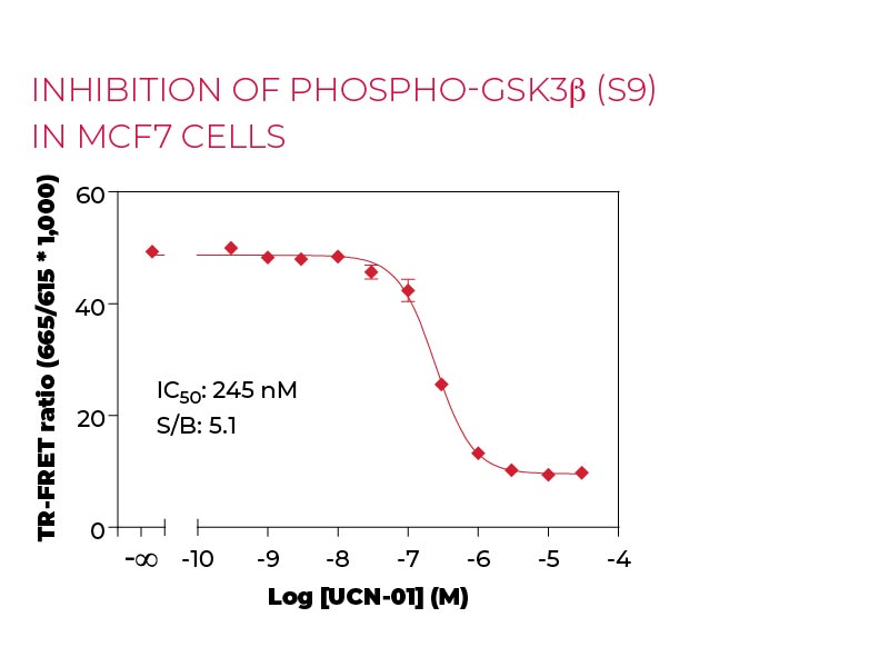 Inhibition of Phospho-GSK3b (S9) in MCF7 cells
