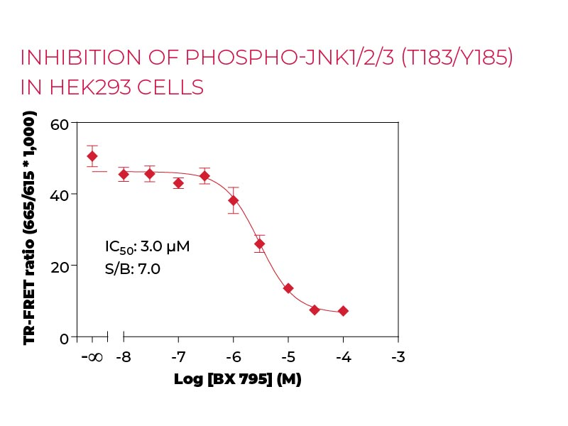 Inhibition of Phospho-JNK1-2-3 (T183-Y185) HEK293 cells