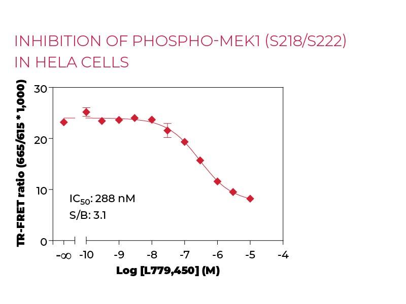 Inhibition of Phospho-MEK1 (S218-S222) in HeLa cells
