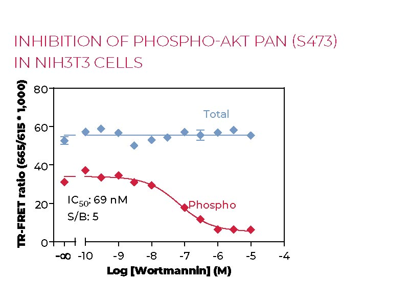 Inhibition of Phospho-Total AKT pan (S473) in NIH3T3 cells