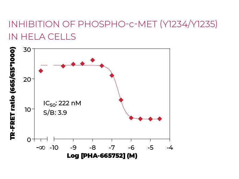 Inhibition of Phospho-c-Met (Y1234-Y1235) in HeLa cells