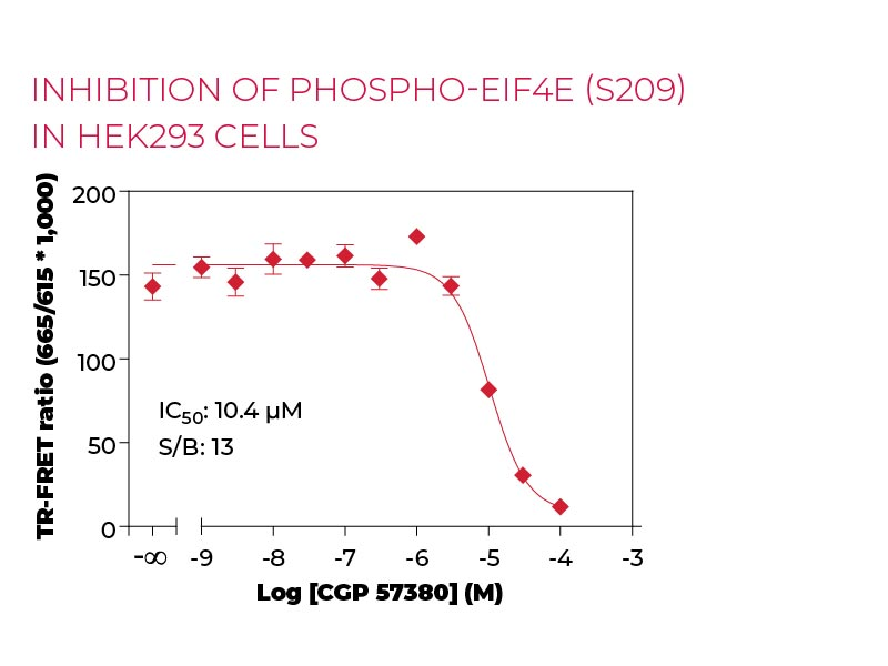 Inhibition of Phospho-eIF4E (S209) in HEK293 cells