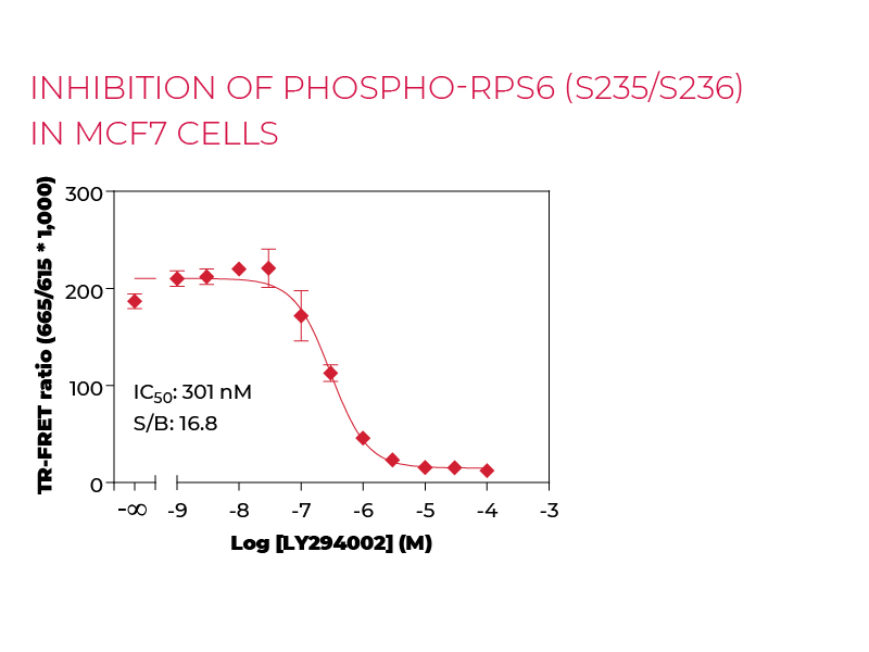 inhibition of Phospho-RPS6 (S235/S236) in MCF7 cells