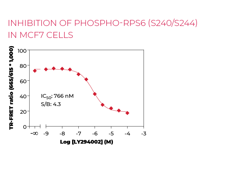 Inhibition of Phospho-RPS6 (S240/S244) in MCF7 cells