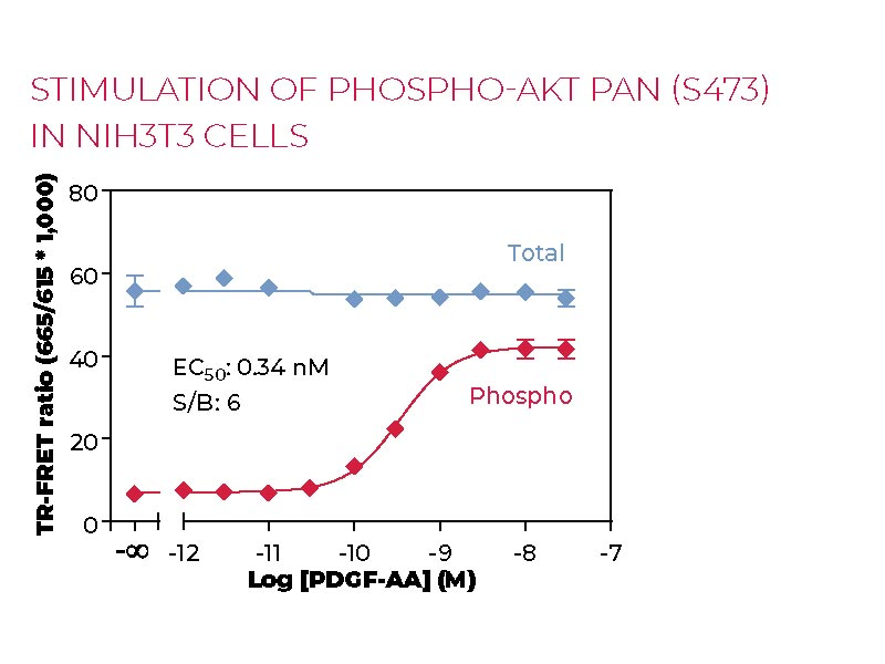 Stimulation of Phospho-AKT pan (S473) in NIH3T3 cells