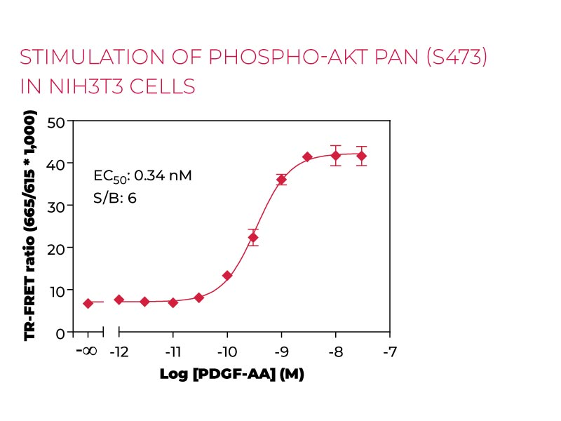 Stimulation of Phospho-AKT pan (S473) NIH3T3cells