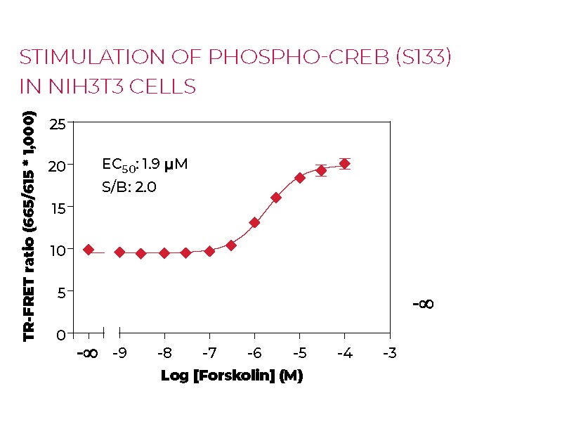 Stimulation of Phospho CREB (S133) in NIH3T3 cells