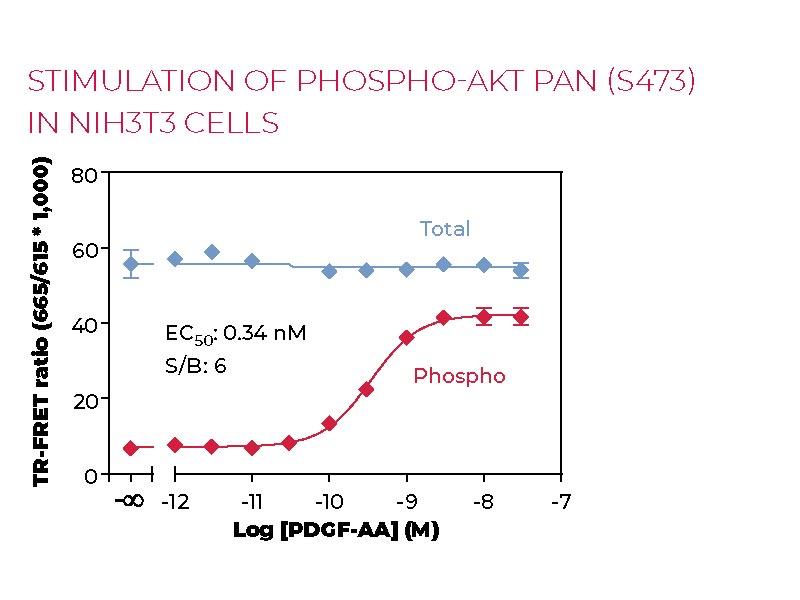 Stimulation of Phospho-Total AKT pan (S473) in NIH3T3 cells