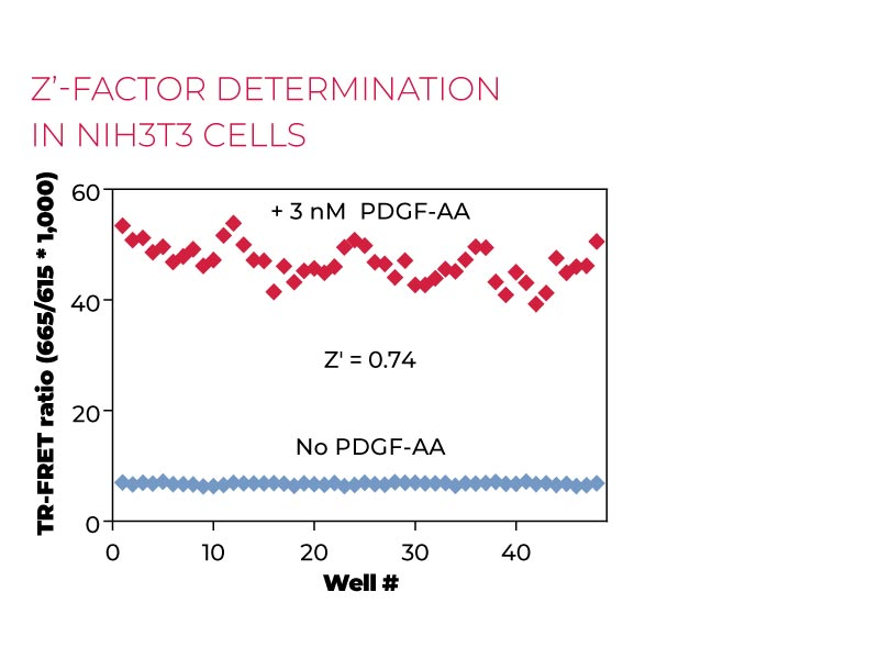 Z'-factor determinationPhospho in NIH3T3 cells