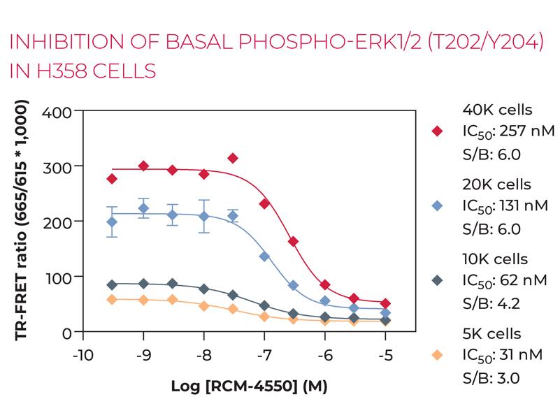 INHIBITION OF BASAL PHOSPHO-ERK1/2 (T202/Y204) IN H358 CELLS