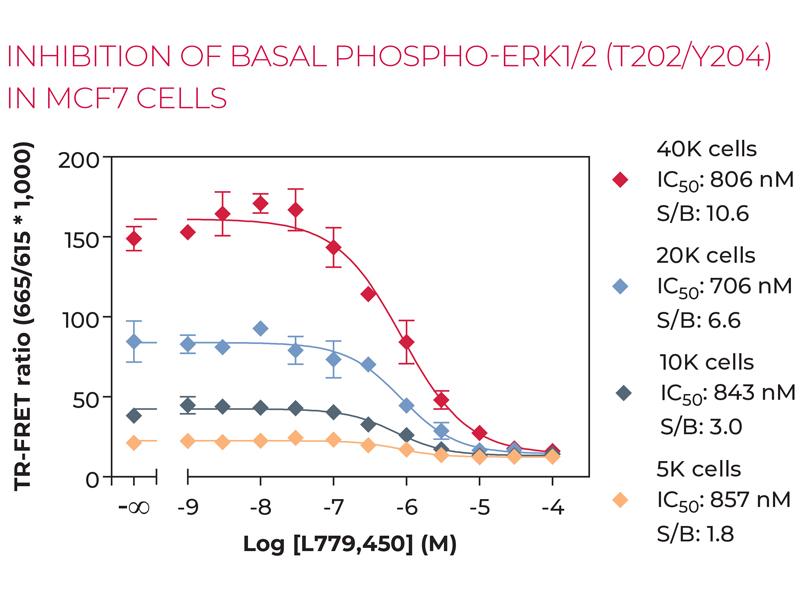 INHIBITION OF BASAL PHOSPHO-ERK1/2 (T202/Y204) IN MCF7 CELLS